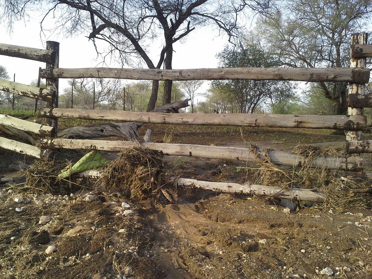Der Zaun hat gehalten