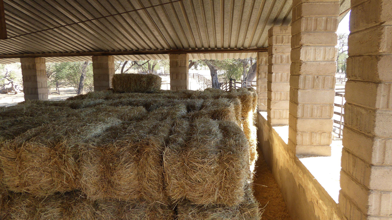 farm zu verkaufen namibia